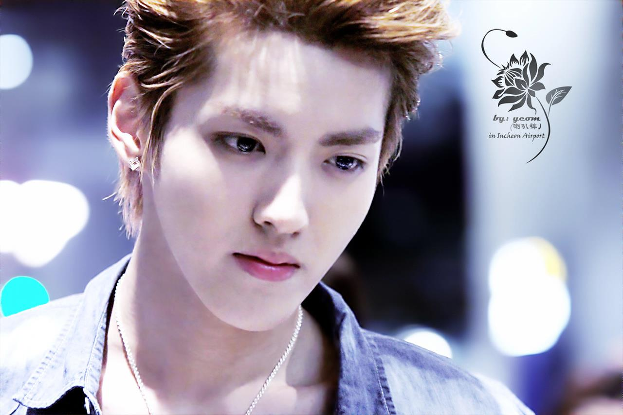 Kris Images Exo M Kris Hd Wallpaper And Background Photos