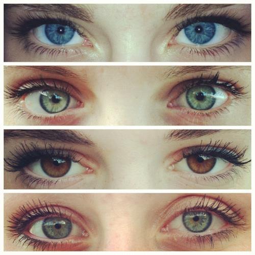 Eyes wallpaper entitled eyes
