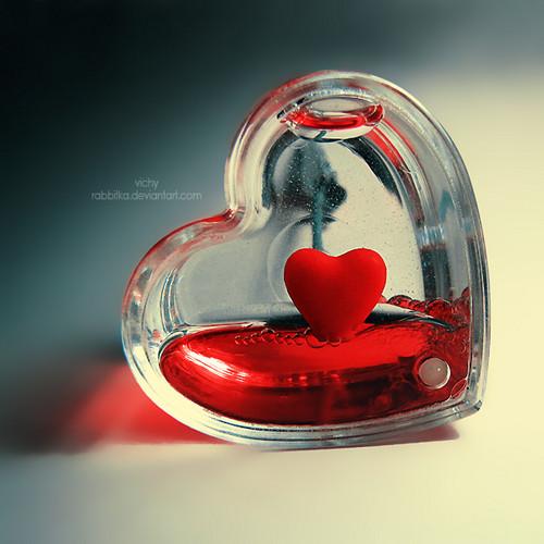 دل . . .