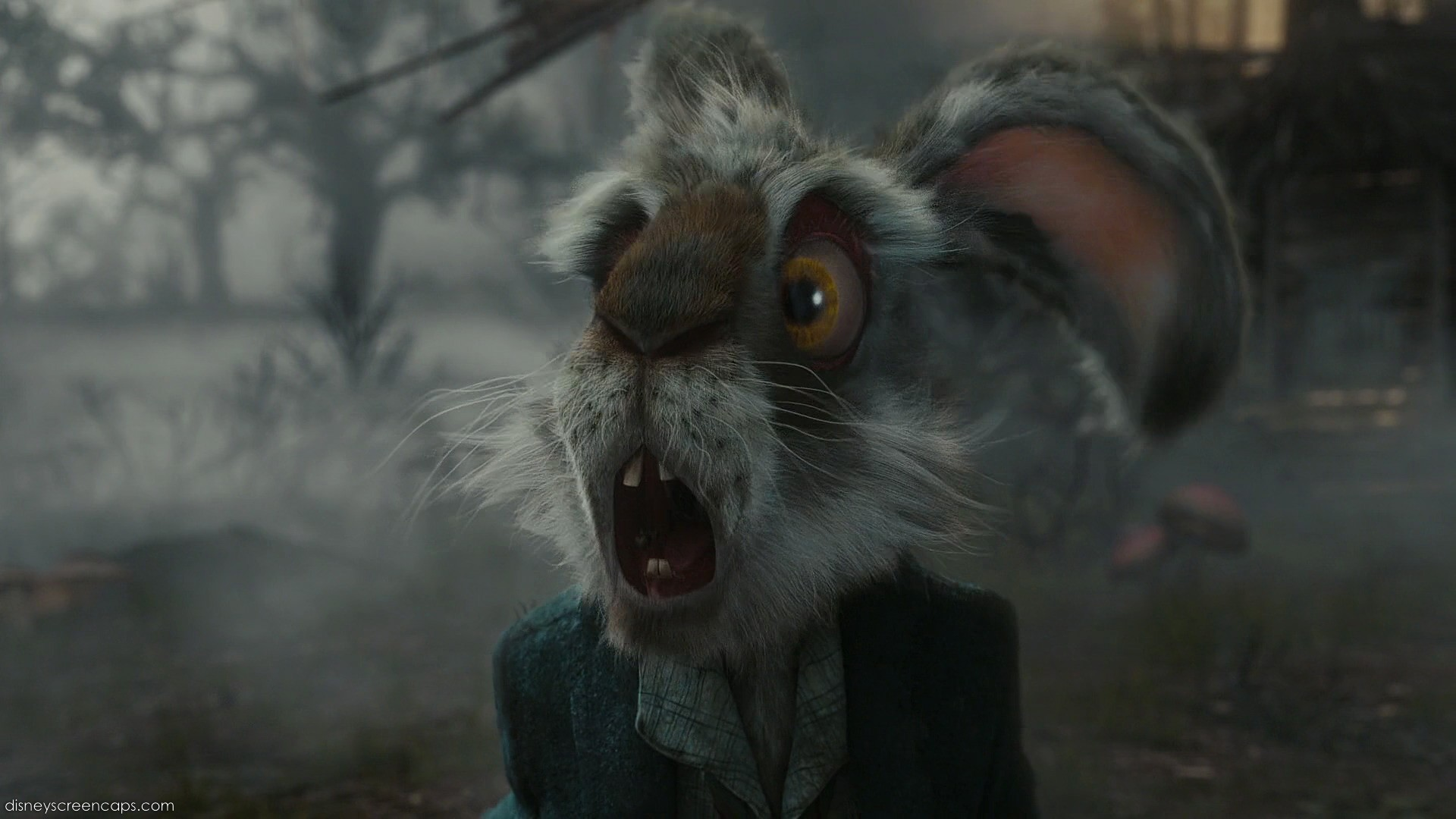 mad march hare - March Hare Photo (33179556) - Fanpop