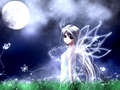 moon firy - fairies photo