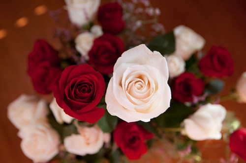 flores wallpaper containing a bouquet, a rose, and a camellia titled rosas