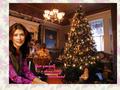 shiny little Christmas (poinsettia frame)