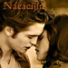 ★ Edward & Bella ☆