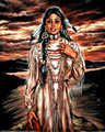 ★ Native American art work ☆  - native-pride fan art
