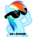 20% cooler - rainbow-dash photo