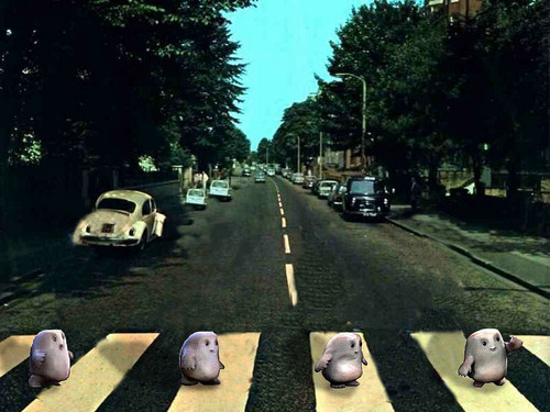 Adipose Road