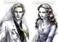 Carlisle and Esme in Twilight Official Illustrated Guide - esme-and-carlisle-cullen photo