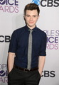 Chris Colfer - chris-colfer photo