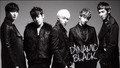 Dynamic Black  - hoya-infinite photo