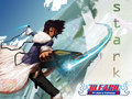 bleach-anime - ESPADA wallpaper