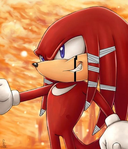 Fist the echidna