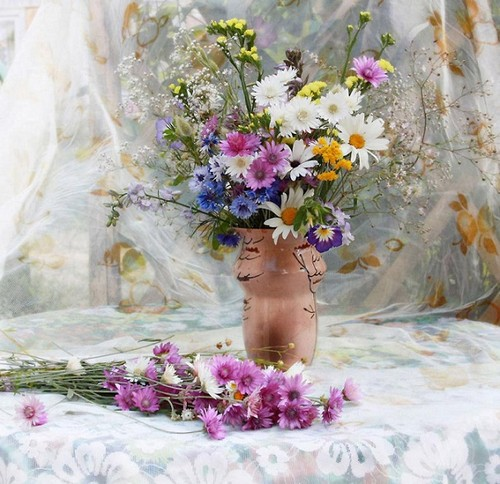hoa For my Fairy Sister ♥