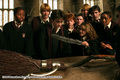 Fred, Geroge, Ron, Harry.. HP 3 - the-weasley-family photo