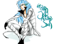 GRIMMJOW - bleach-anime fan art
