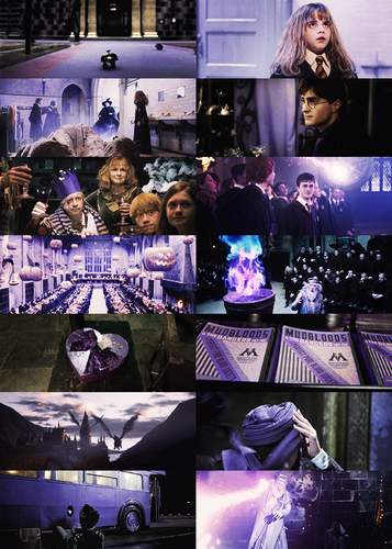 Harry Potter in purple