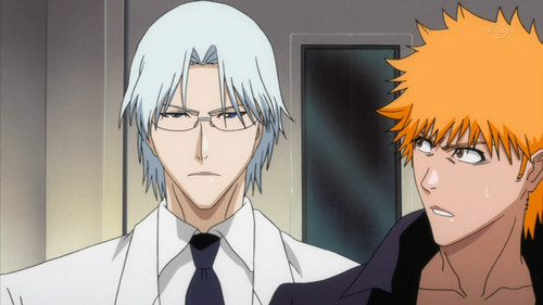 anime bleach wallpaper called Ichigo & Ryūken