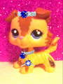LPS!!! - littlest-pet-shop fan art