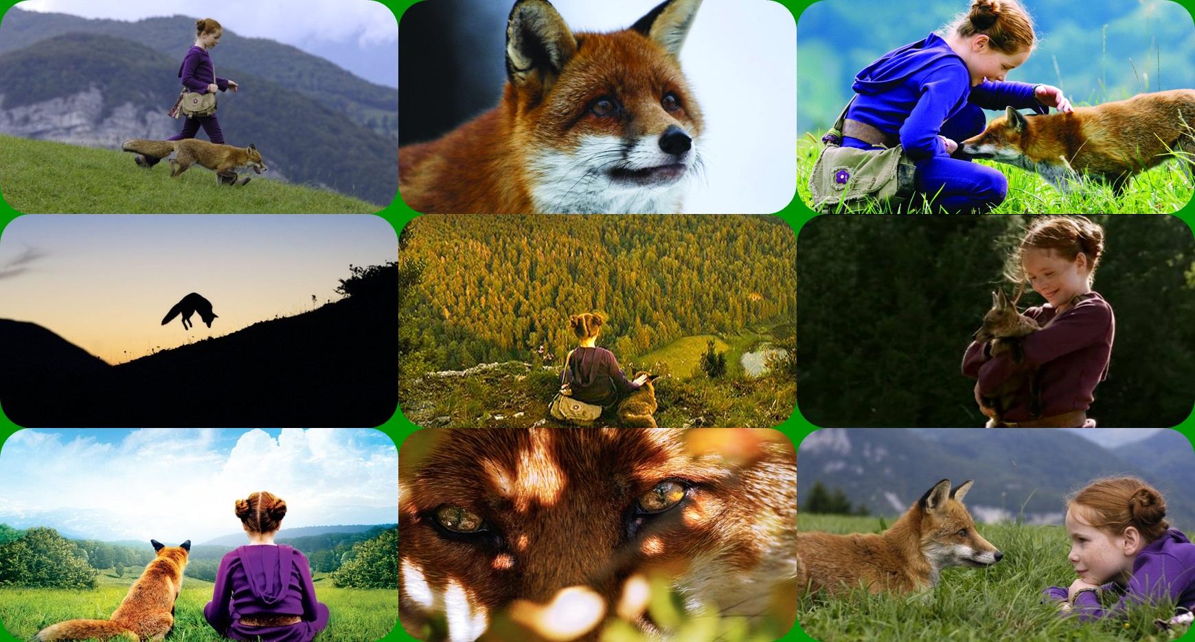 European cinema images le renard et l 39 enfant 2007 hd for Inside 2007 movie online free