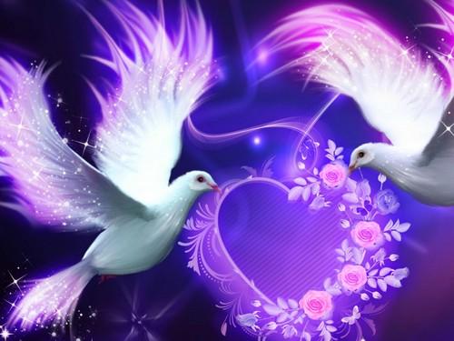 प्यार Birds