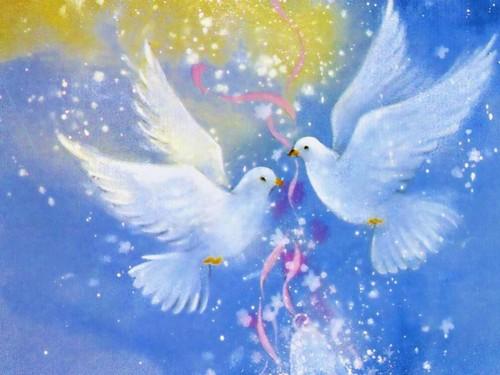 cynthia-selahblue (cynti19) fond d'écran titled l'amour Birds