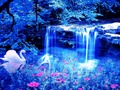 Magical Blue wallpaper - cynthia-selahblue-cynti19 wallpaper