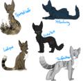 Medicine Cats of Thunderclan