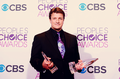 PCA 2013 - nathan-fillion photo