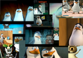 PoM College - penguins-of-madagascar fan art