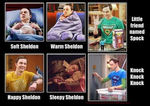 Sheldon Kitty