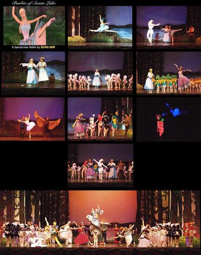 cisne Lake Ballet por Olivia Dow
