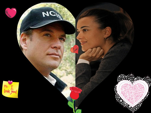 NCIS wallpaper with a business suit titled Tiva all the way!