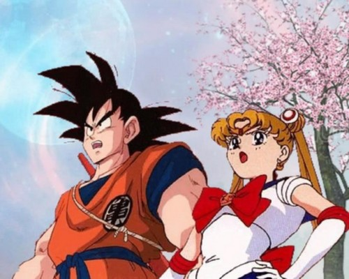 Usagi and goku