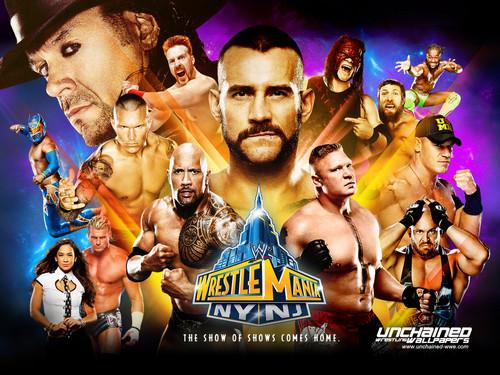 WWE kertas dinding called Wrestlemania 29