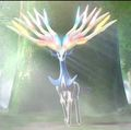Xerneas - pokemon-x-and-pokemon-y-version photo