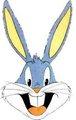 bugs  - bugs-bunny photo