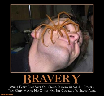 Demotivational poster spiders xd photo