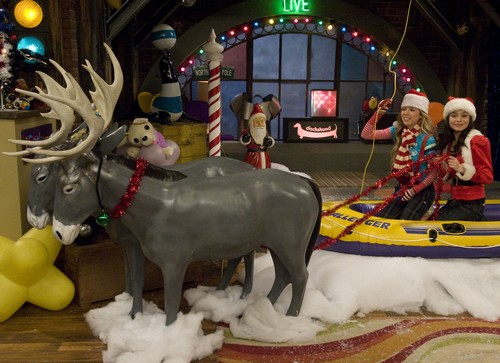 iCarly वॉलपेपर probably with a lippizan and a dairy cattle entitled iChristmas