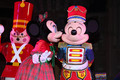 mickey and minnie - mickey-and-minnie photo