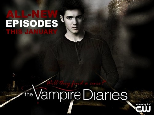 new TVD season 4 promo wallpaper