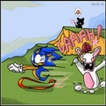rabbit chaces sonic - sonic-the-hedgehog photo