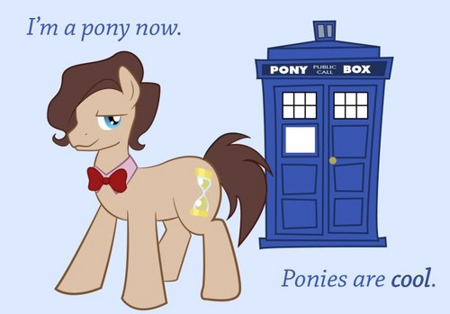 the pony time llord