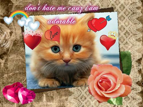 toooooo cute!!!!!!!!!!!!!!!!!!!!!!