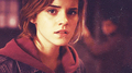  Hermione Granger - hermione-granger photo