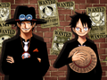 Ace &amp; Luffy - one-piece photo