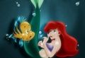 Ariel  - the-little-mermaid photo