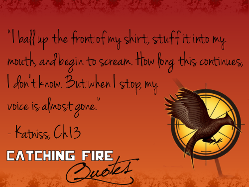 Catching Fire wallpaper possibly containing a sign and anime titled Catching Fire quotes 101-120