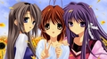 Clannad-Nagisa, Kyou,Tomoyo - clannad photo