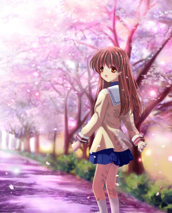 WP images: Cute anime, post 18 |Clannad Ushio Older