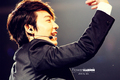 Donghae walllpaper~ - lee-donghae photo